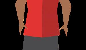 Cerys Transparent